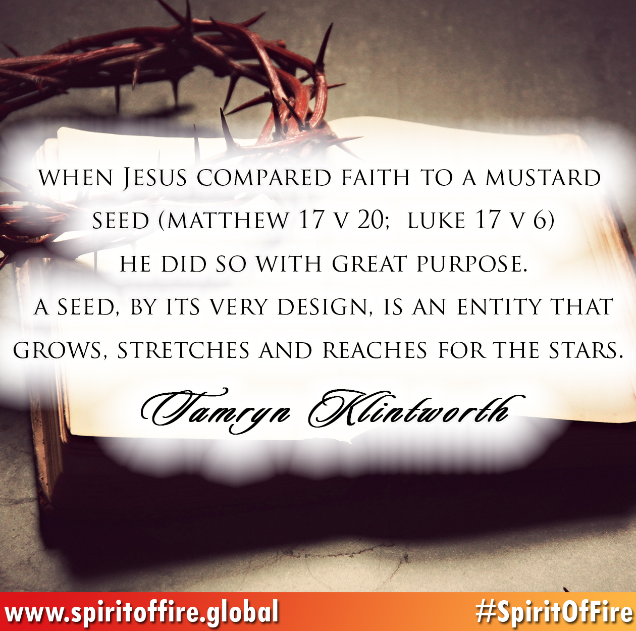 when-jesus-compared-faith-to-a-mustard-seed
